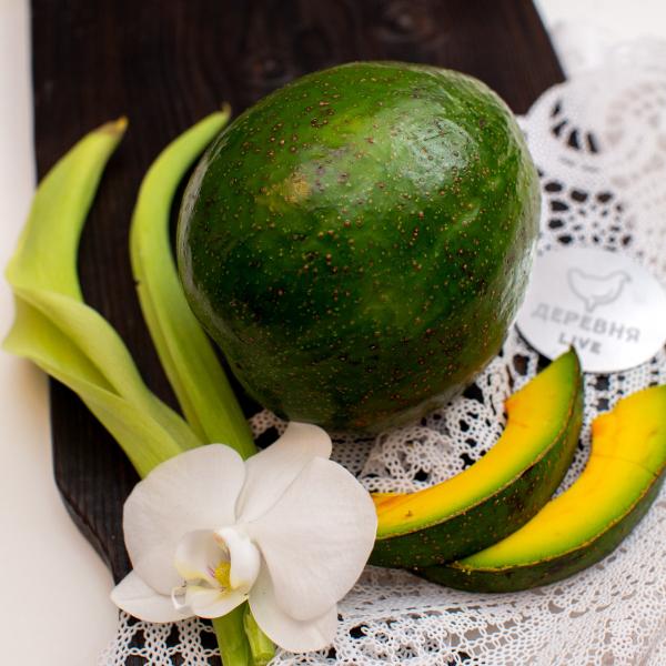 Авокадо сорт Маргарита, 500 гр.