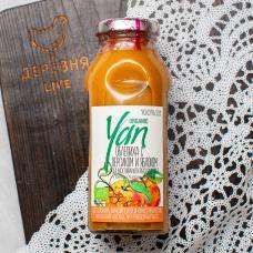 Сок облепиховый (с добавлением персиково-яблочного сока) Organic YAN 250мл