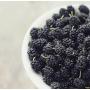 Шелковица черная, 500 гр.