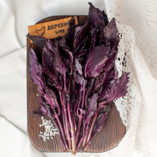 Базилик фиолетовый, 100 гр.