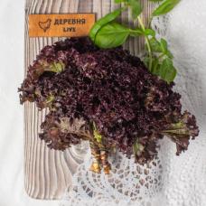Салат Лолло Росса, пучок, 140 гр.