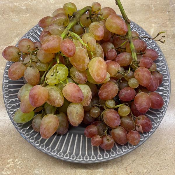 Виноград Лучистый,  0,5 кг