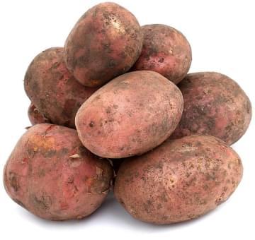 """Картофель """"Скарлет"""""""
