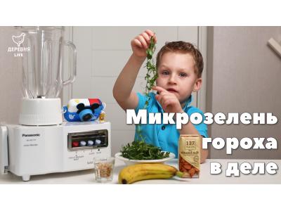 Смузи из микрозелени гороха рецепт