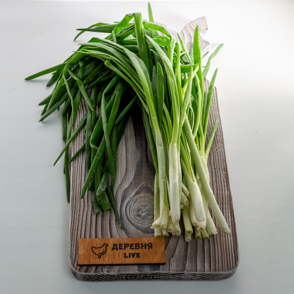 Лук зеленый, 100 гр.