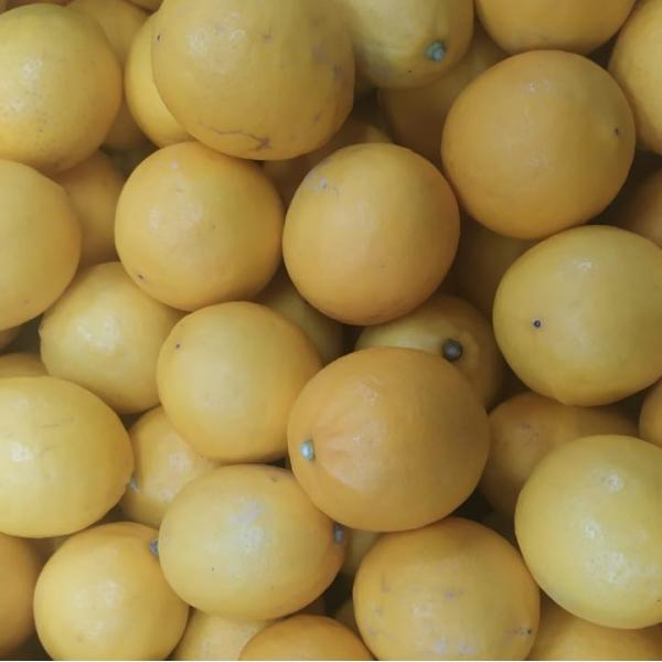 Лимон, 0,5 кг.