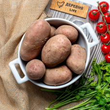"""Картофель """"Скарлет"""" 1 кг."""